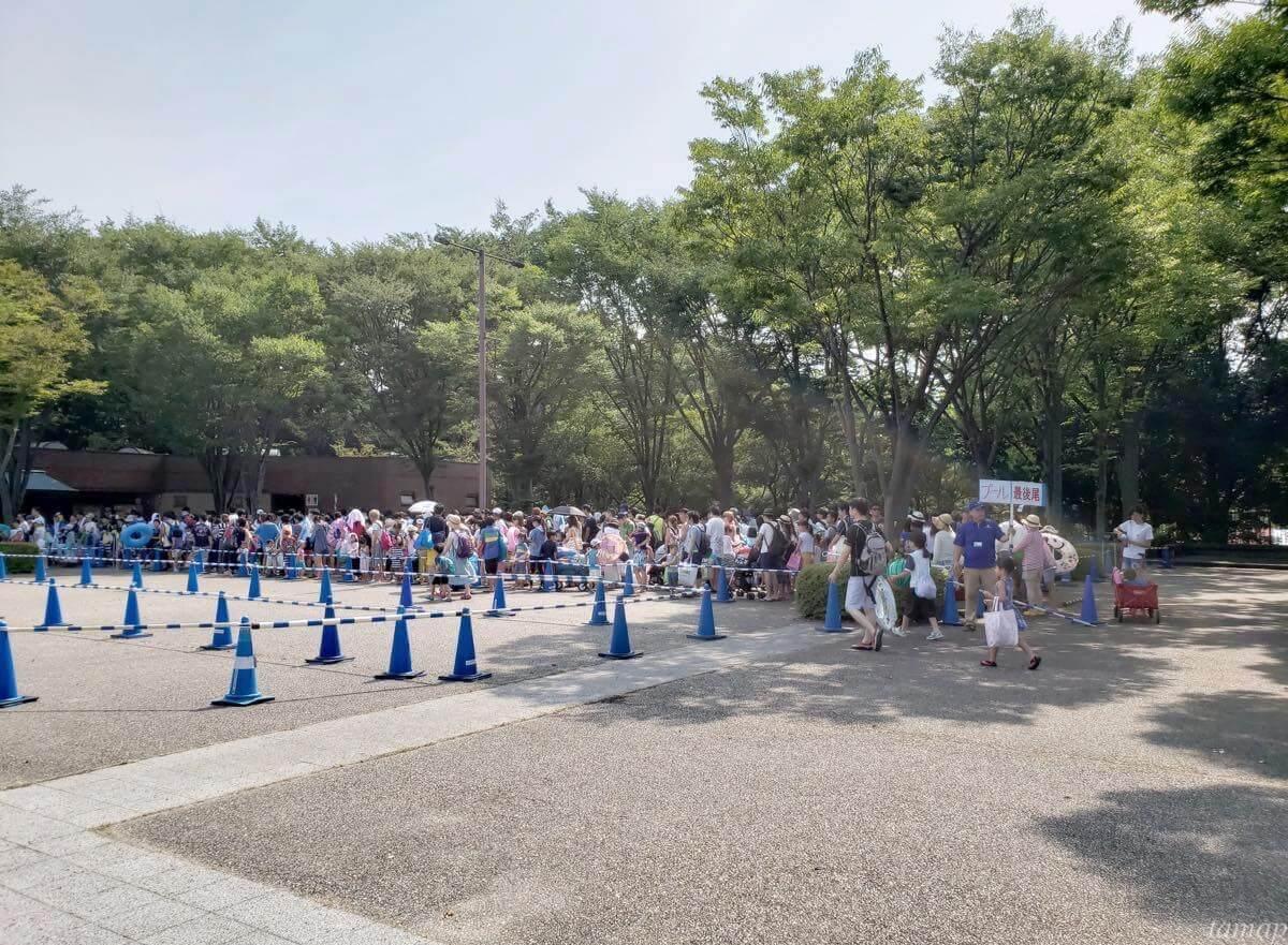 昭和記念公園のプールの行列