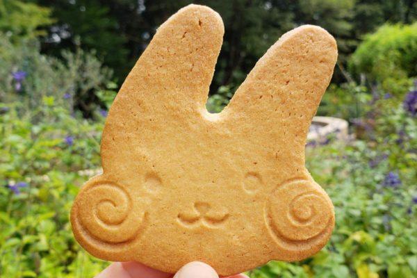 昭和記念公園「花木園売店」にはお土産や地元のお菓子、季節限定ソフトクリームあり