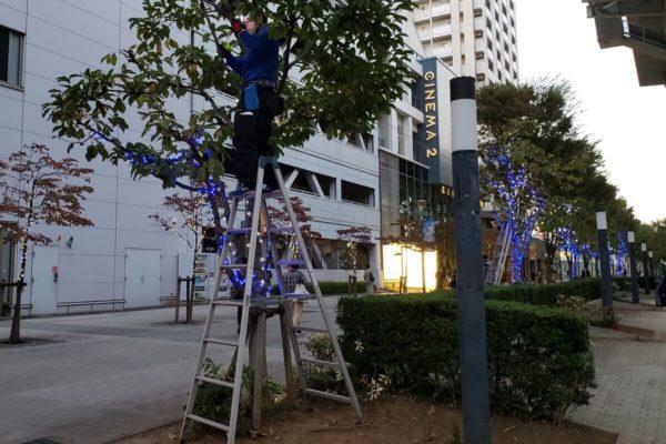 立川北口駅前でキラキラ輝くイルミネーション「Tachikawa燦燦Illumination」の準備中だった