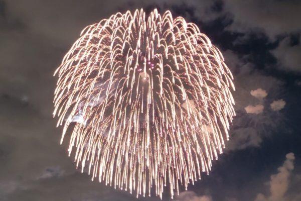 昭和記念公園花火大会2019は7月28日(日)に順延決定!再び夏の夜空に大輪が咲く