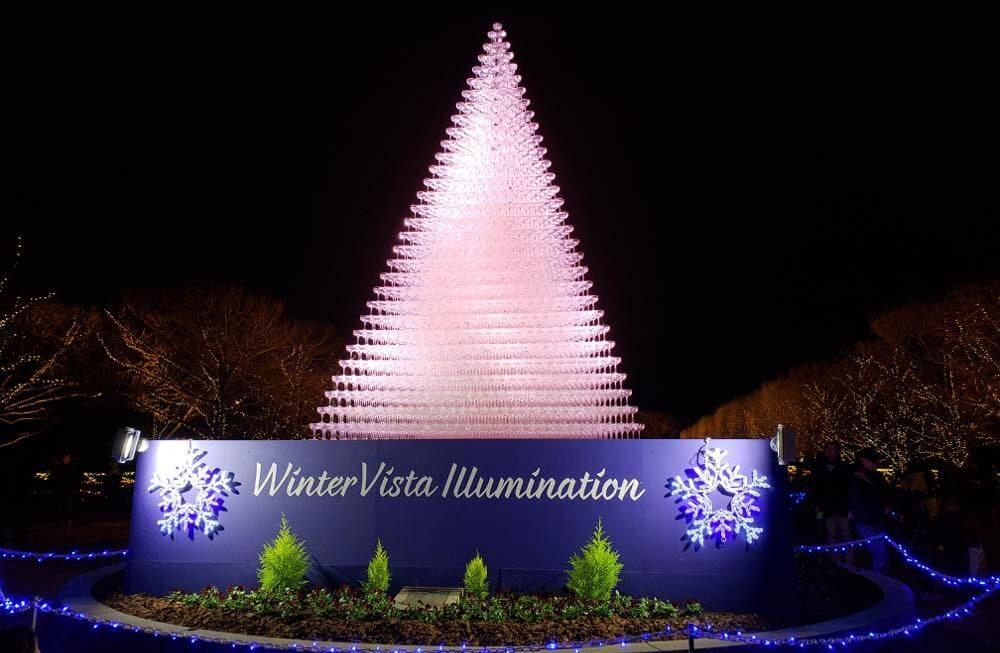 昭和記念公園のイルミネーション2018点灯式に行ってきた。シャンパングラスタワーが美しい!