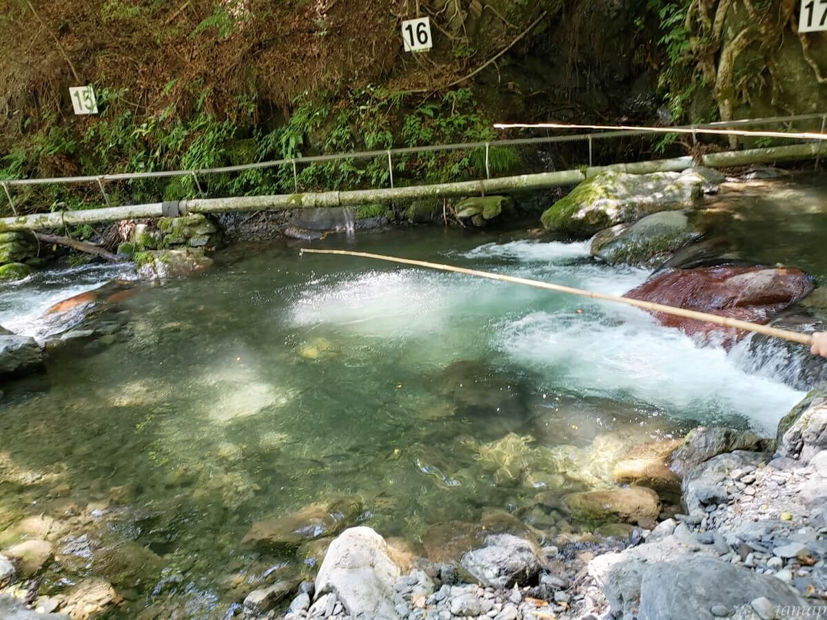 峰谷川渓流場で釣っているところ