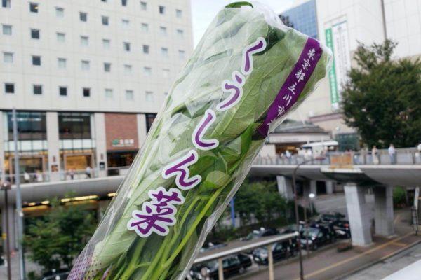 立川産「空芯菜」で作る!にんにくの炒めものレシピ。忙しい夕飯時やあと一品欲しい時にぴったり
