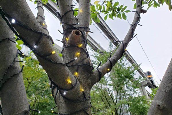 Tachikawa燦燦Illumination2019の準備始まる。サンサンロードの街路樹に電球の設置完了