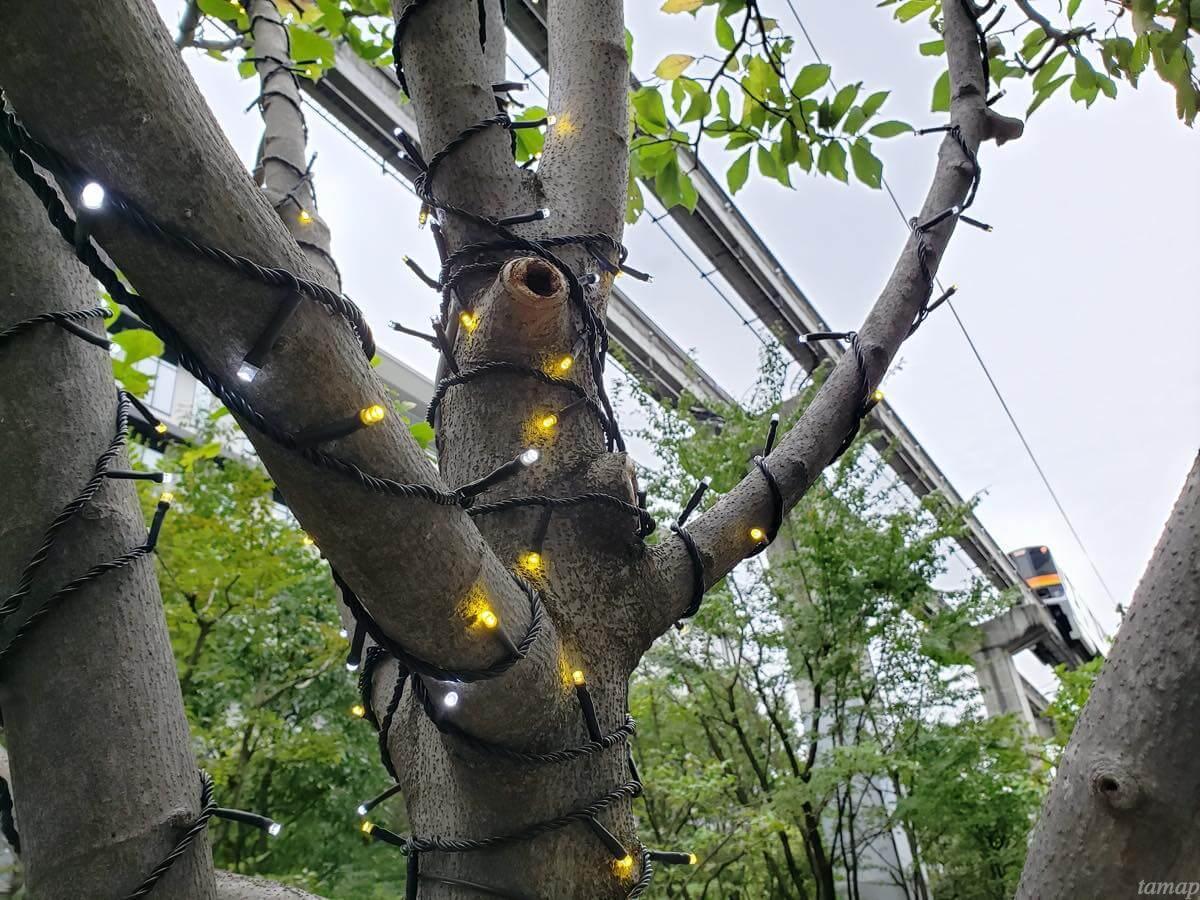 サンサンロードに張られた電球