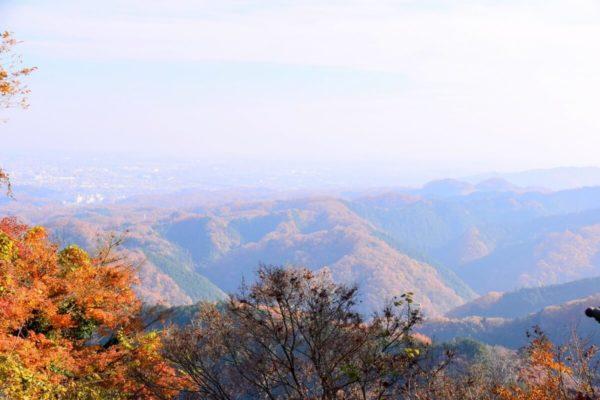 【多摩地域】紅葉情報2019|おすすめ穴場スポット10選。気軽に行ける近隣エリアで秋を満喫しよう