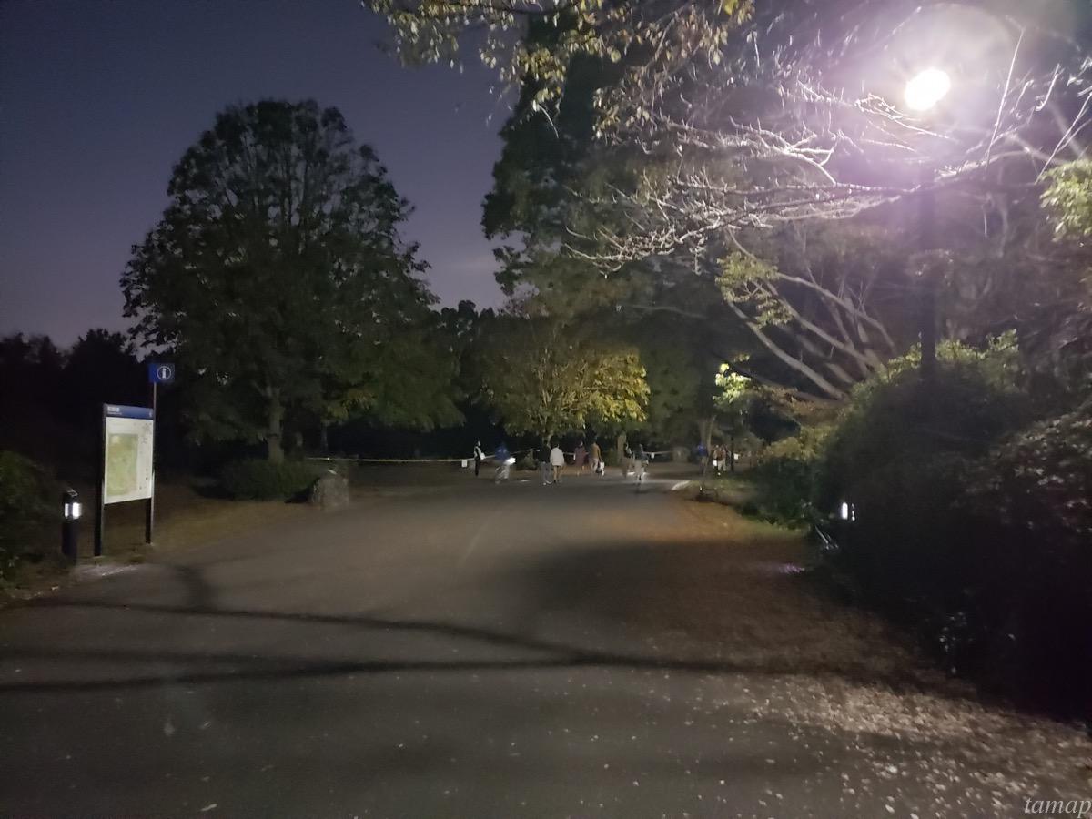日本庭園までの道のり