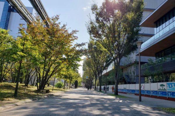 JR立川駅北口再開発「GREEN SPRINGS」2019年11月中旬の建設状況。立川ステージガーデンが出現