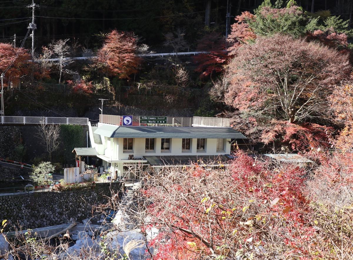 東京トラウトカントリー