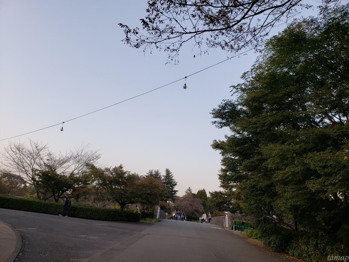 秋の夜散歩までのルート