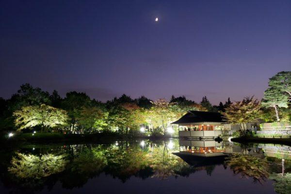夜の紅葉が楽しめる昭和記念公園「秋の夜散歩」を西立川口から日本庭園まで実際に歩いてみた