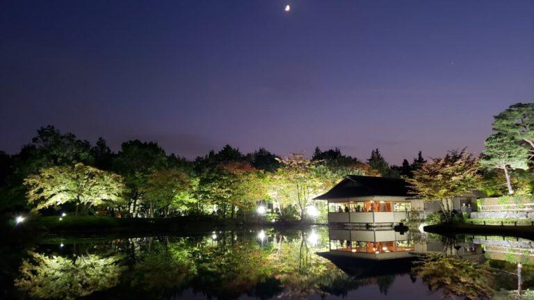 秋の夜散歩の日本庭園