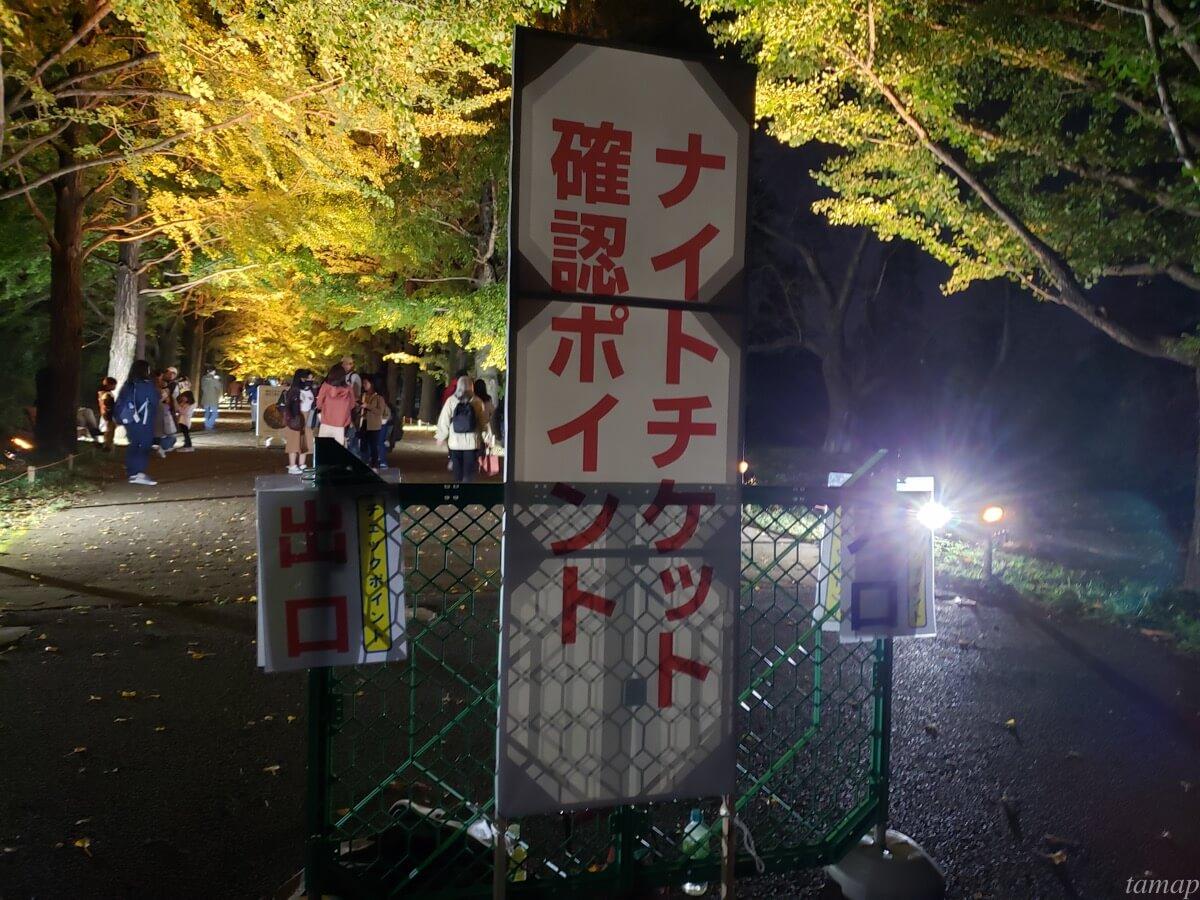 秋の夜散歩のナイトチケット確認ポイント