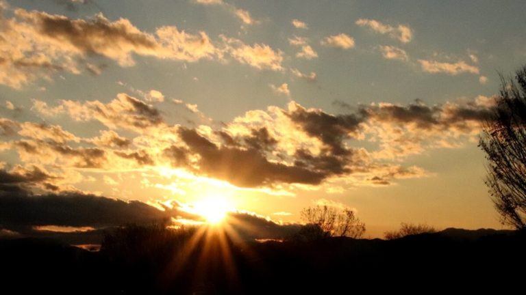 昭和記念公園から見える風景