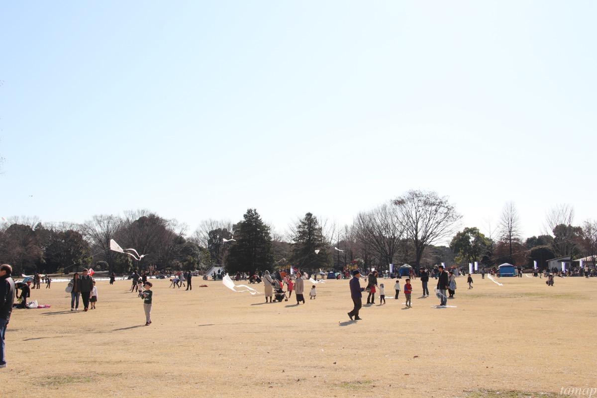 凧揚げで遊んでいる人たち