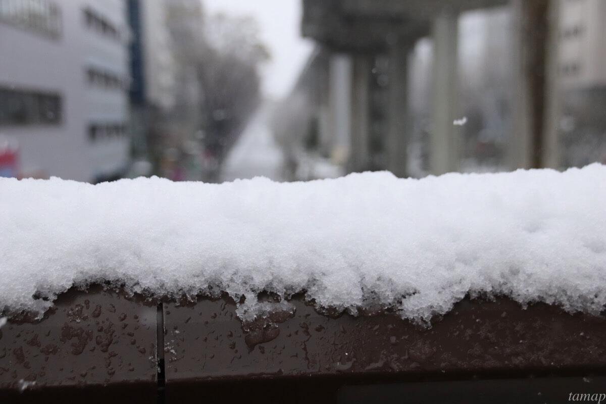 サンサンロードの雪