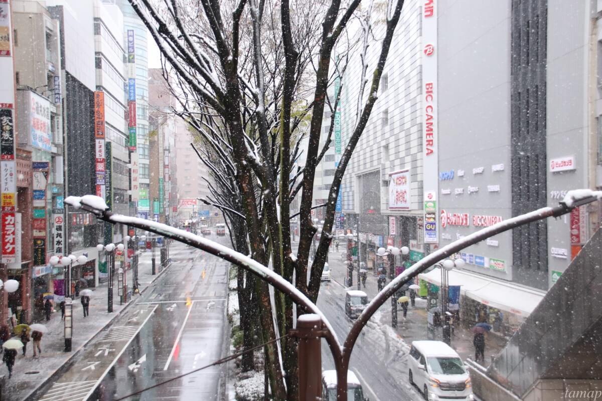 立川通りの雪