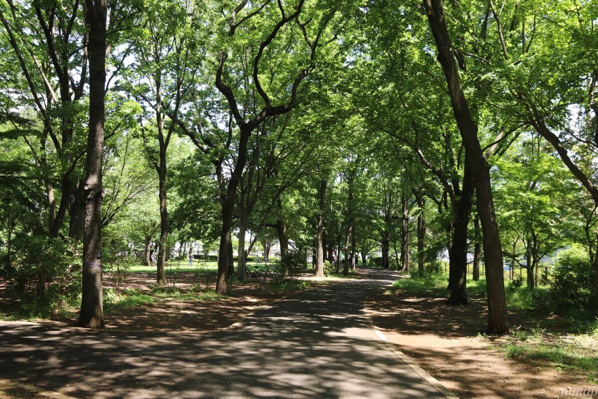 東大和南公園