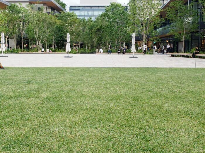 GREENSPRINGSの芝生