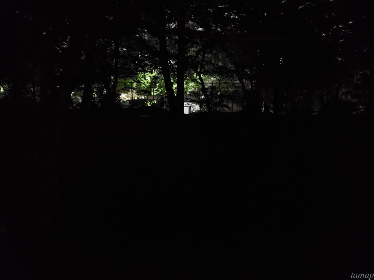 玉川上水駅前のホタル