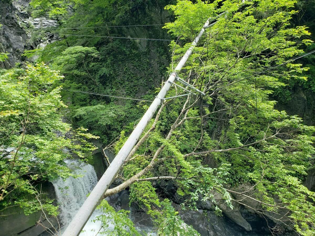 日原鍾乳洞の電柱