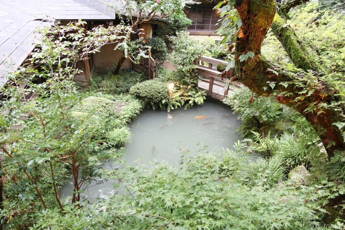 室内から見える池